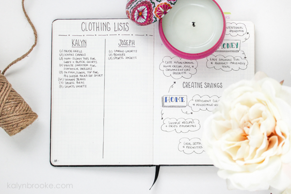 Bullet journal collection ideas - financial